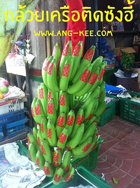 กล้วยติดซังฮี้ เป็นเครือ มีผ้าแดงประดับตรงเครือสวยงาม